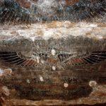 Malereien im Edfu-Tempel