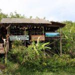 Kleine Bar im Dschungel