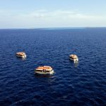 Tenderboote als Shuttleservice
