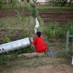 Bewässerungssystem auf dem Hof