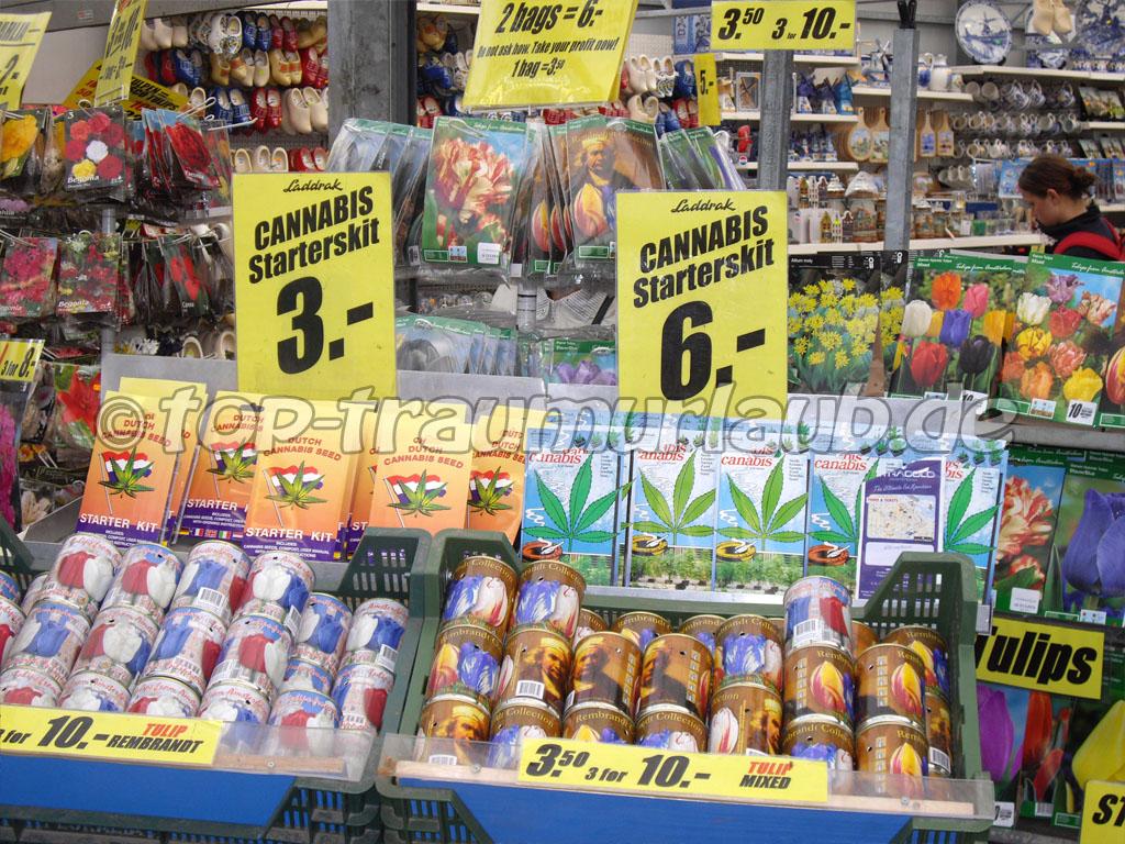 Cannabis Starterskit