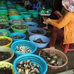 Lokaler Fischmarkt